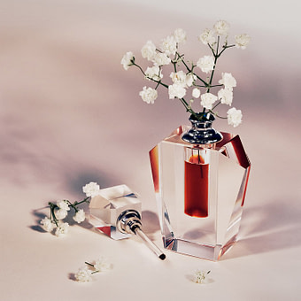 Fragrance Editorial - Studio Ventana